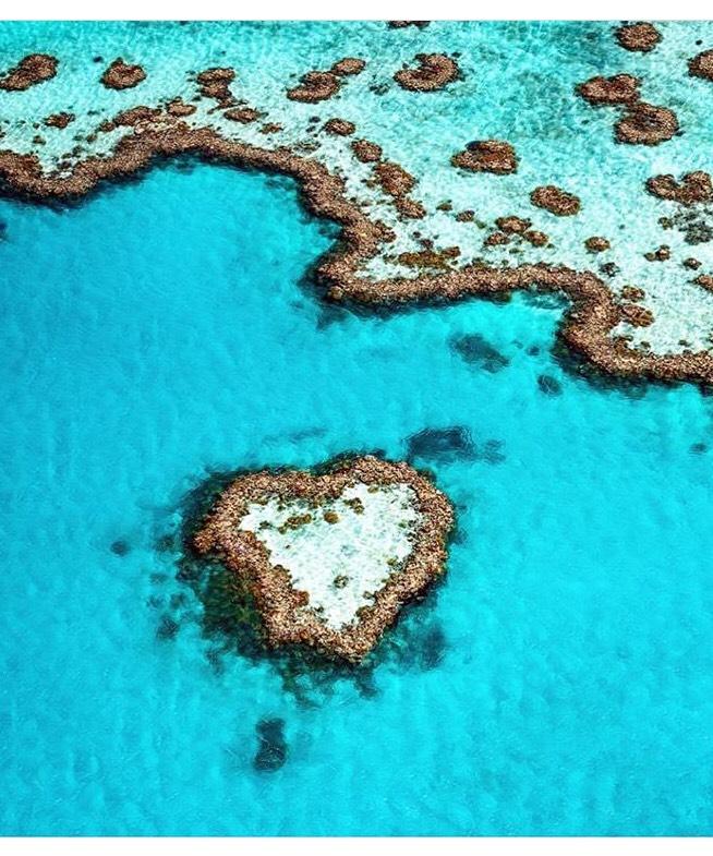 Heart reef, great reef Barrier- Australia