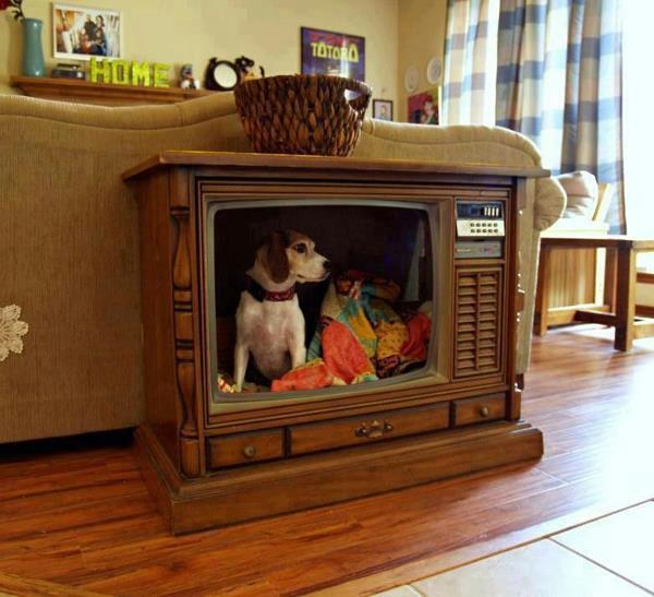 Turn a old TV into an indoor dog house.