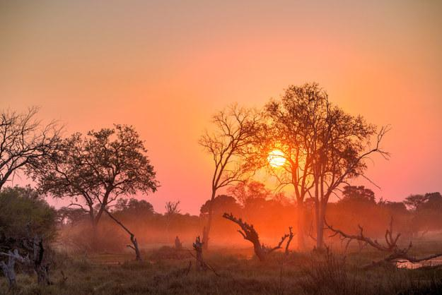 1. Botswana WHY GO IN 2016: Because this year, Botswana celebrates its 50th year of independence, which is huge. But also, Botswana is just beautiful, a country made primarily of desert and delta, with 17% of its lands devoted to its national parks.