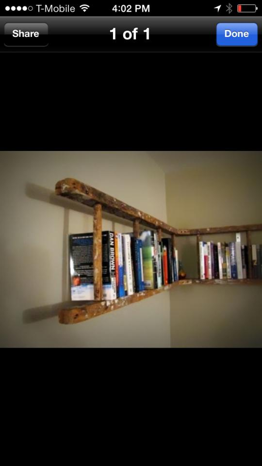 Hang an old ladder sideways for beautiful rustic book storage!