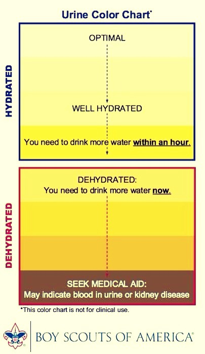 These colors indicate your urine yes it Sounds gross but it's very useful to determine if your dehydrated. use this chart to know when your body needs more water! Click on pic for better view