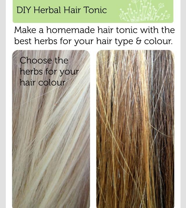 Diy Hair Toner And Hair Helping Herbs By Bobbi Jean