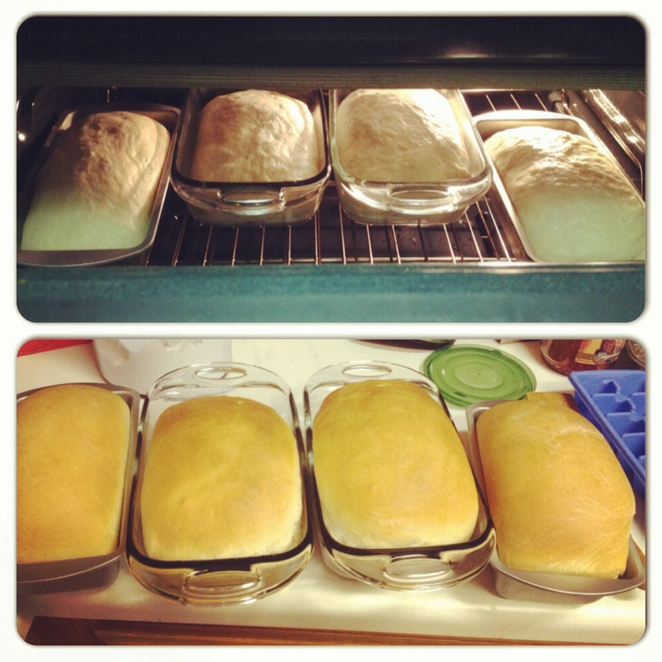 Before and after baking. :)