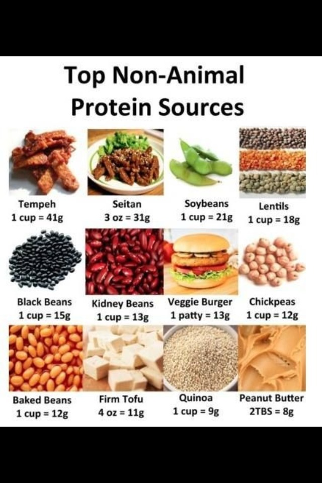 The vegan protein myth is one of the most annoying things vegans have to deal with lol➡️