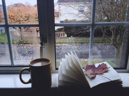 If you decide to have some tea/coffee and/or read a book on a rainy day, sit by the window in order to take in the view of your neighborhood on a rainy day. Rain creates a more picturesque vibe.