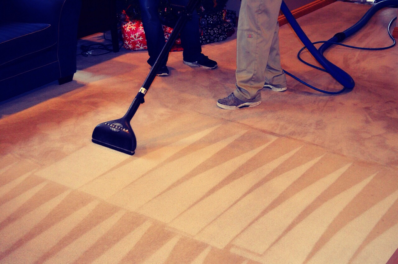 Steam clean your carpets. This will get all of the mud, dirt, and grime out of your carpets that have built up over the winter. I use vinegar and water first, which will stink to high heaven but pulls out so much crap that it's worth it. Then I follow with a carpet cleaner. Works and looks great!