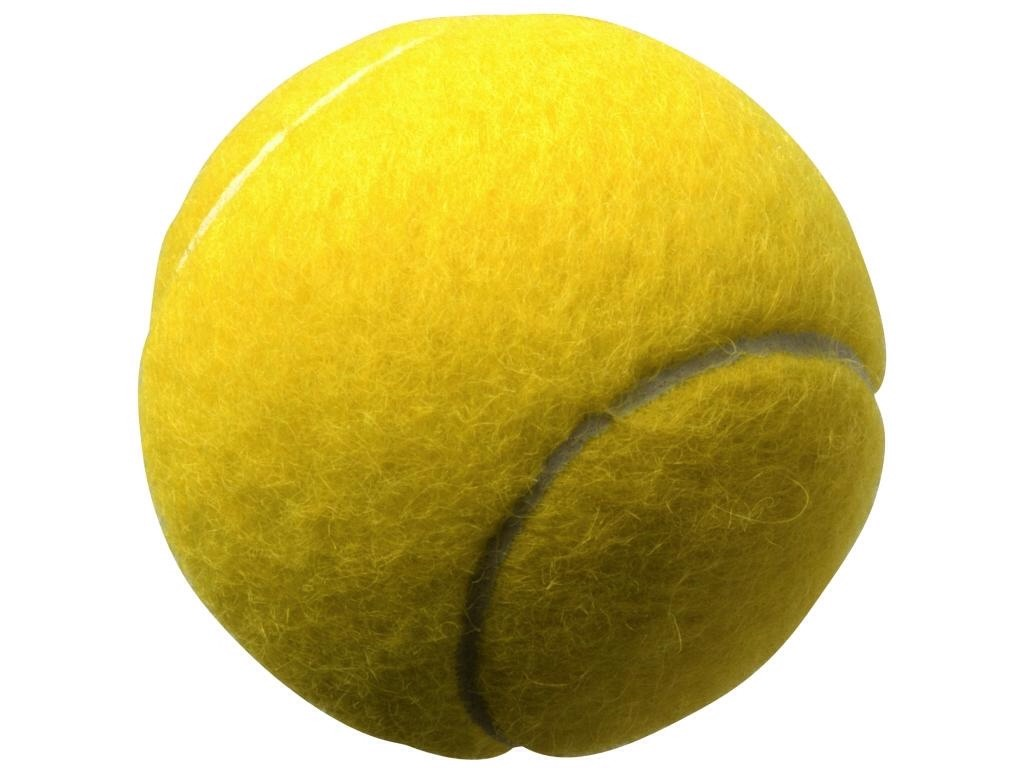 Rub the tennis ball on the scuff and it comes right off!