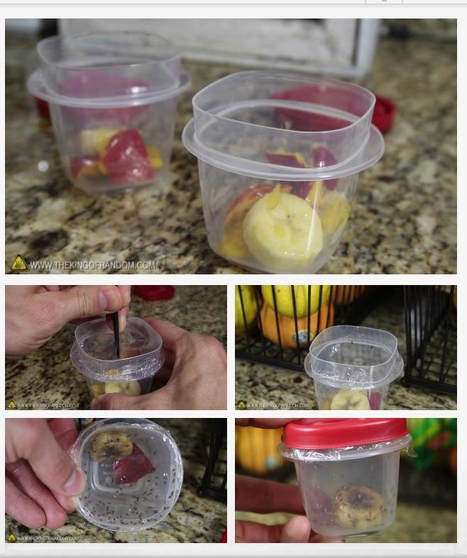Hack #7 : Fruit fly hack