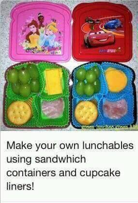 Great idea for a trip or lunches !