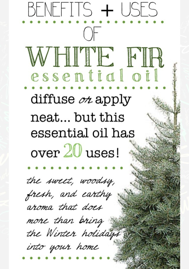 You can apply this oil neat (no dilution) to your reflex points and/or area of concern; diffuse with water [Lavender, or Frankincense]. Aromatically it creates a feeling of grounding, anchoring, and empowerment while it can stimulate the mind and relax the body.