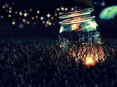 Catch firefly at night!