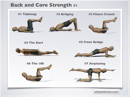 for back and core