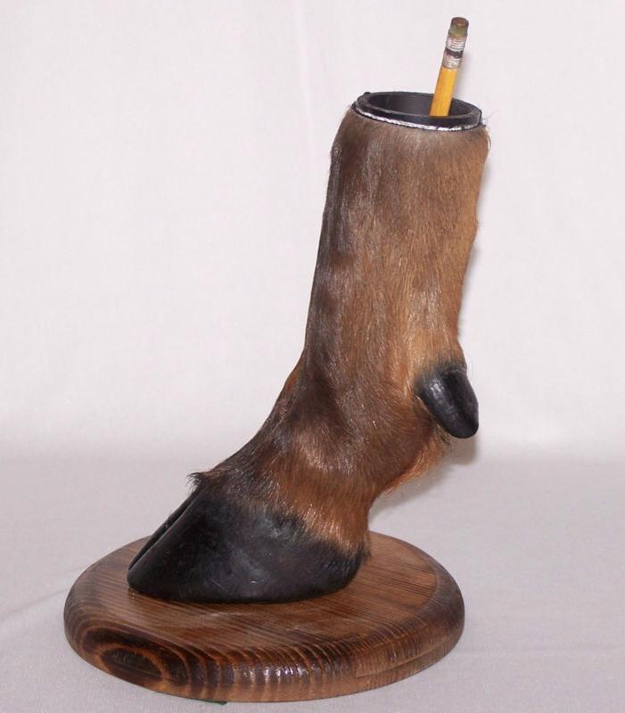 Deer Hoof Pencil Holder