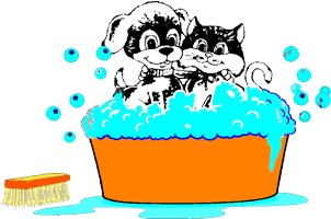 Rub and massage the washing up liquid into your pets fur, The more you use the more effective it will be. PLEASE AVOID CONTACT WITH EYES AND INSIDE EARS.