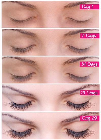 •Create New, Thick, Healthy Lashes •Lengthen Existing Lashes By Up to 83% •Prevent Lashes from Falling Out