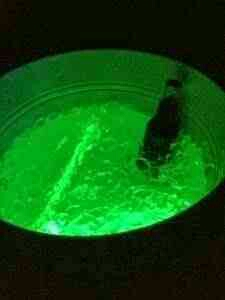 just ass glow sticks to the bottom and pour ice over!