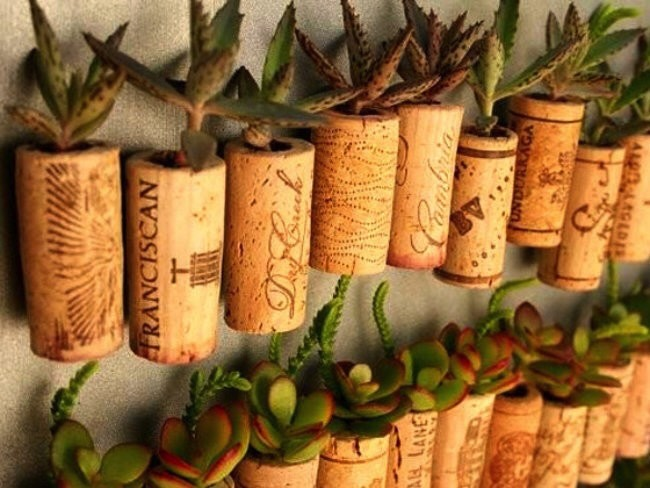 Wine corks: Old wine corks can be used to make a creative tiny garden. Or, you can glue a whole bunch together to make a corkboard or shower mat.