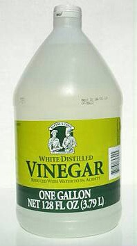 Weed Killer Use vinegar to get rid of pesky sidewalk and driveway weeds!