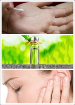 🌿Relieves asthma or other breathing conditions when a few drops are added to a humidifier. 🍃Works as as antiseptic on small cuts. 🌱Keeps your bathroom fresh. 🌿Relieves earaches; mix 1 drop of tea tree oil with 1 tsp. olive oil, drop mixture into the ear + then remove by tilting head.