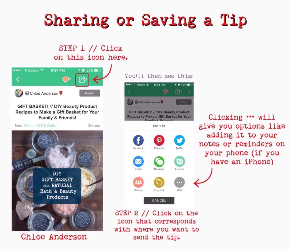 Tryto getin the habit of sharing/savingtipsthatyoulike &might need again. You can do this by sending it to your/a friend'semail, text, Pinterest, or sharing it to your friends on Musely,etc. (see image above).  PLUS sharingtips gets you SEEDS (points).  Also,add& followuserswho post thetips you're interested intoyourMusely friend's/followinglist.This will allow you to see their tips wheneverthey share them withtheirfriends. Adding &Followingshown below.