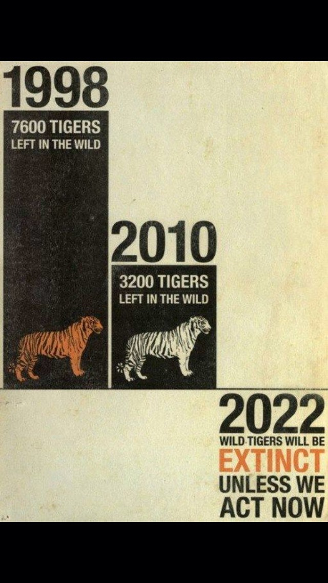 Save the tigers.