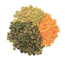 Lentils: Tiny but mighty, these legumes are teeming with protein, iron, zinc, and biotin, making it a great staple for vegetarian, vegans, and meat eaters.