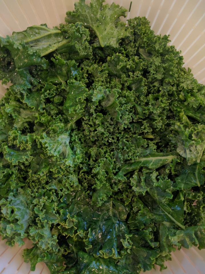 I prefer curly kale. Dinosaur kale is a bit more tough.
