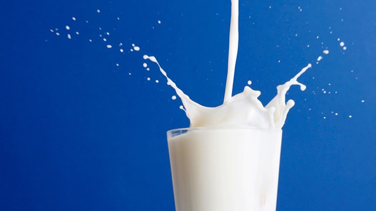 "Drink more milk. There's some evidence that calcium deficiency, which is common in many women, may slow metabolism,"" says Lakatos. Research shows that consuming calcium through dairy foods such as fat-free milk and low-fat yogurt may also reduce fat absorption from other foods."