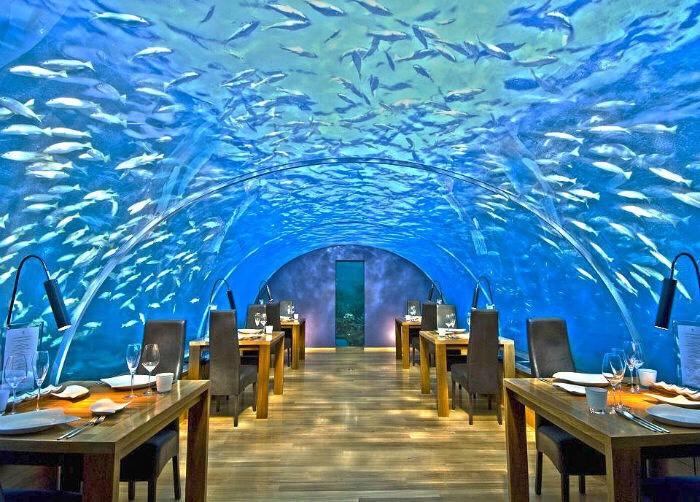 Ithaa Undersea Restaurant in Rangali Island, Maldives