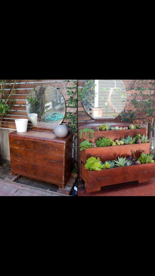Make an old dresser to a beautiful sort of green house.