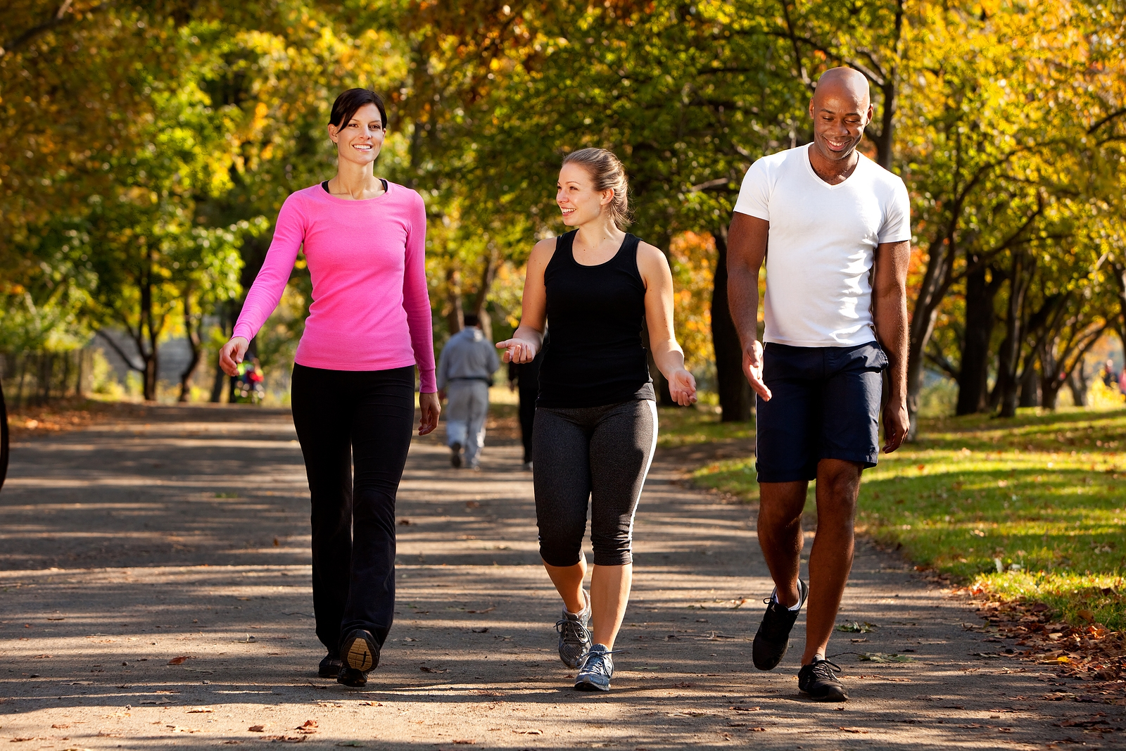 walk!! go for walks with your friends with close ones to you. do it to catch up to have fun to observe nature etc etc.  try to do it as constantly as you can. you will be losing weight without having to spend money or even hurt yourself