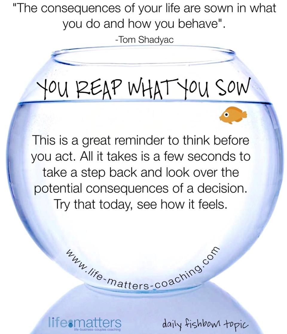 Daily fishbowl topic