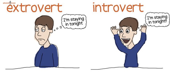 Introverted: you get your energy from internal factors, within yourself. These personality types don't mind being alone, don't like crowds, keeps to self, quiet, does not have need for a lot of excitement in their life, has few friends, private, thinks before speaking, independent, etc.