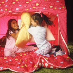 2. Campout in your backyard! If you don't have a tent, just get bunches of blankets and pillows! If it's to cold out then make a fort inside. Make smores, tell ghost stories, really make it like a camping trip! The more creative the better!