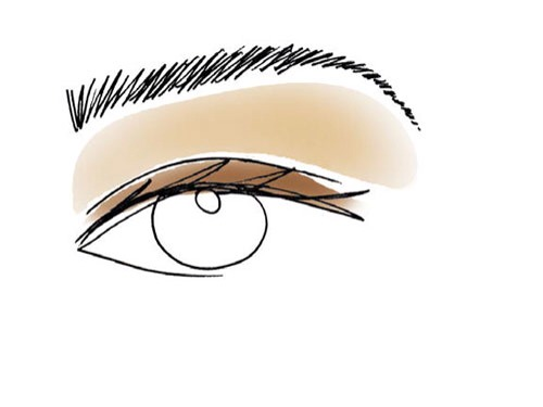 4.  Rub the softest color in your palette above the creases and up to the brow bones to highlight.