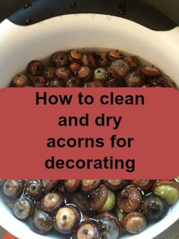 Wash them in water and bake them for an hour at 200-250 to dry them before you put them in your fall decor. This will kill the bugs and prevent them from molding.