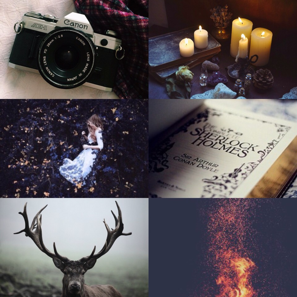 Sagittarius sun, Capricorn moon, Taurus rising, and tenth house Aquarius aesthetic