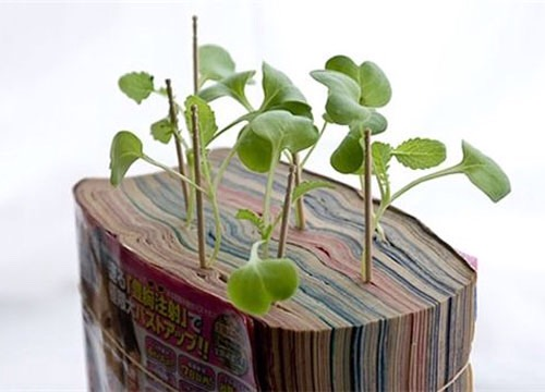 Use old book!!! Add some water plant your flower or herb of choice. The book holds waster great!!