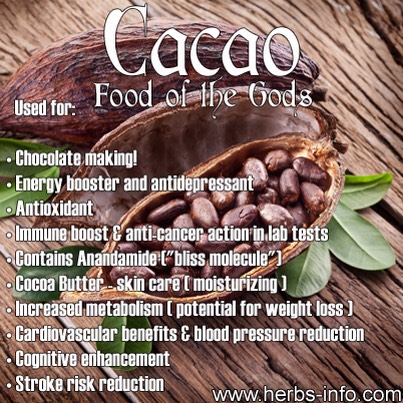 CACAO | Let me begin with chocolate as it is a universal favorite -- & for good reason. It tastes great, but it does not end there! Find out here why the raw form of chocolate, cacao is a great choice for your energy drinks: