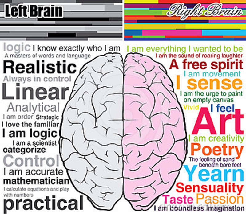 left brain vs right brain learning styles essay Up next are you left brain or right brain  super learning - concentration, study music, binaural beats | enhance your learning skills - duration: 2:02:52.