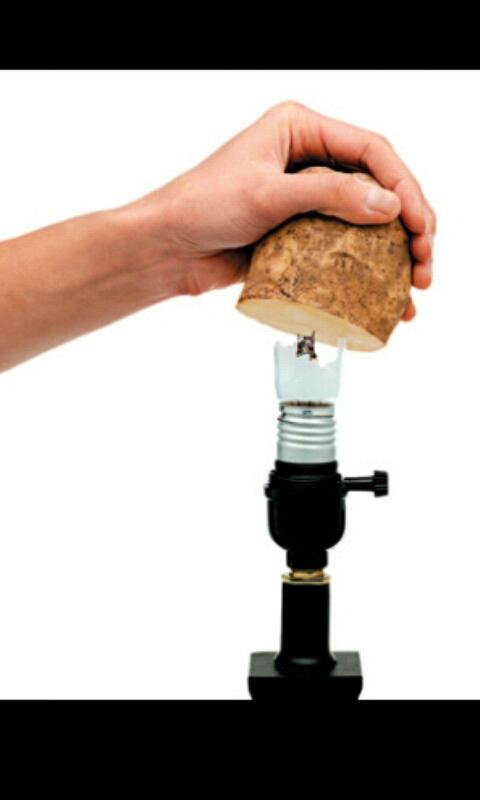 use a potatoe to remove a broken light bulb..