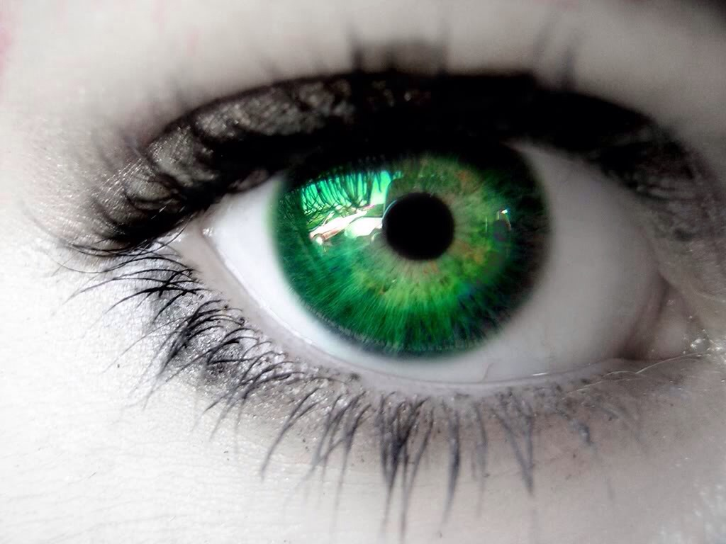 Use purple eye shadow to bring out the green flecks or sections in your eyes