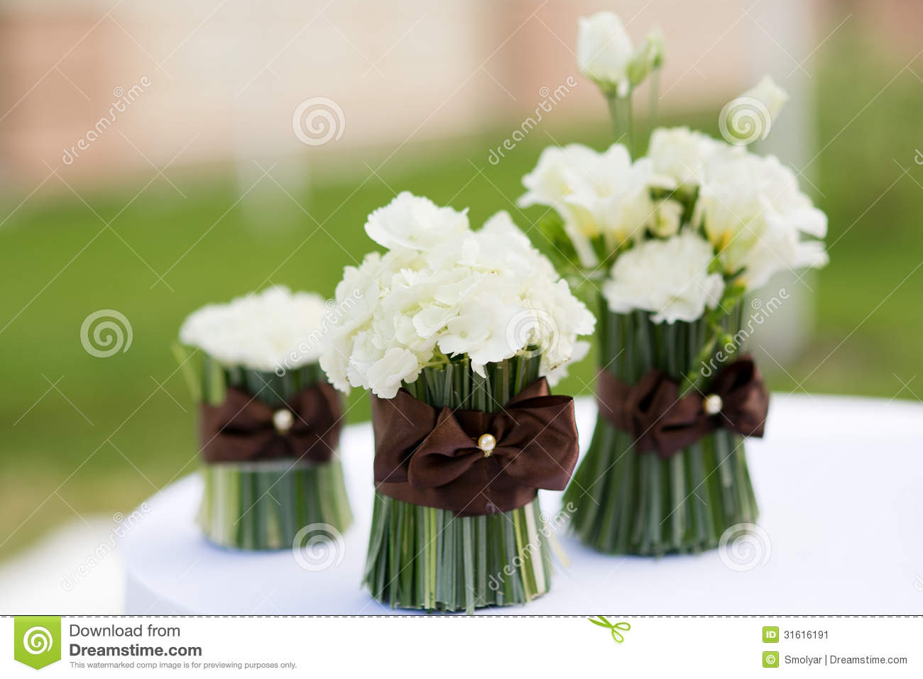 Types Of White Flowers Good To Know