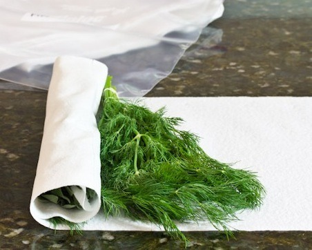 Wrap fresh herbs( cilantro, mints, basil leaves etc.) in a paper towel and store them in a plastic bag.
