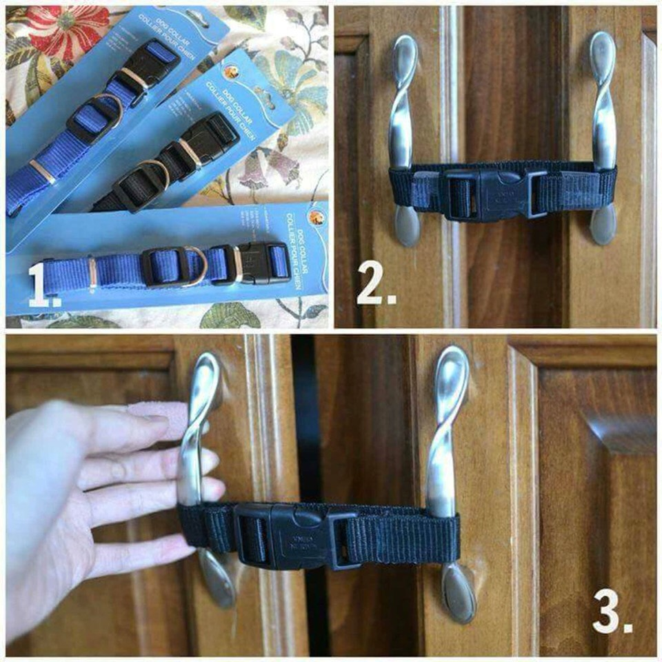 Buy the dog collars from the dollar store to help child-proof your house! So cheap and they are strong enough to keep littlekids out!