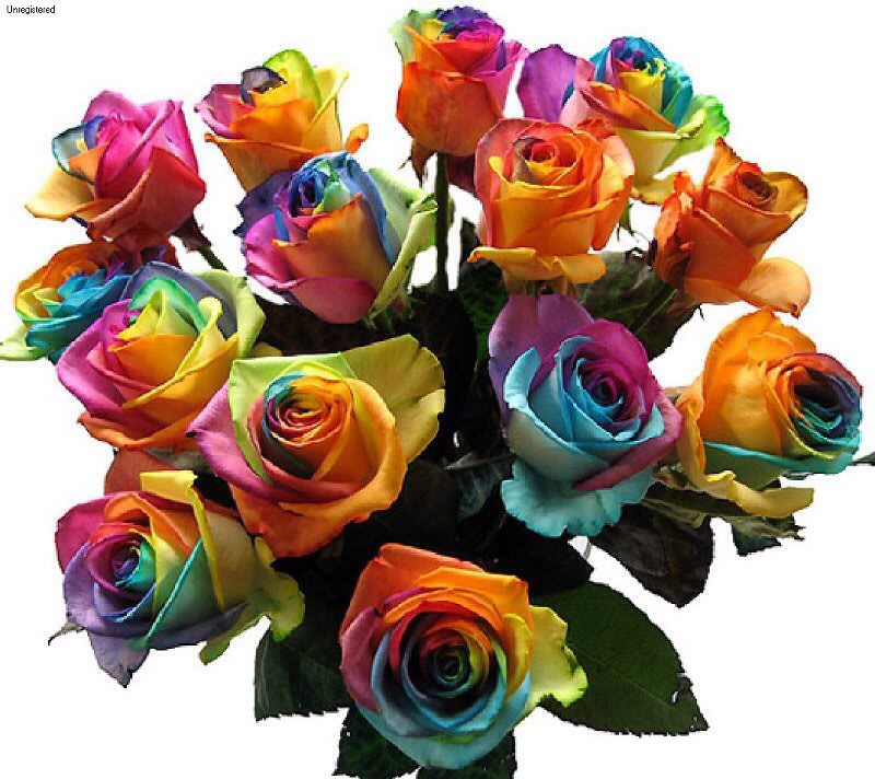 Transfer flowers to a vase with clean water once desired color is reached! (: